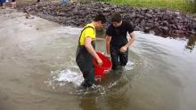 Summer youth releasing retired adult lake trout into Keweenaw Bay.